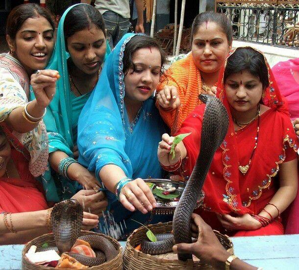 Nag panchami 2020 | आखिर क्यों मनाई जाती है नाग पंचमी जानी इसके पीछे की कहानी