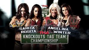 Jen's Wrestling News: TNA Knockouts Tag Championship