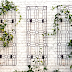 Improve Your Outdoor Space With A Wrought Iron Trellis