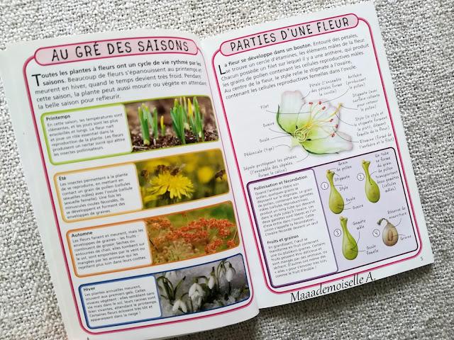 || Petit guide de poche Les fleurs (Présentation & Avis)(Chut, les enfants lisent # 109)