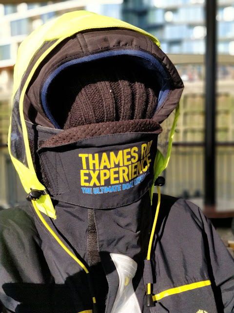 Thames RIB Experience review