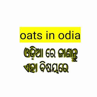 Oats in odia