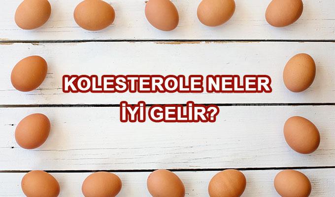 Kolesterol Nasıl Düşürülür? Kolesterole İyi Gelen Bitkiler Nelerdir?
