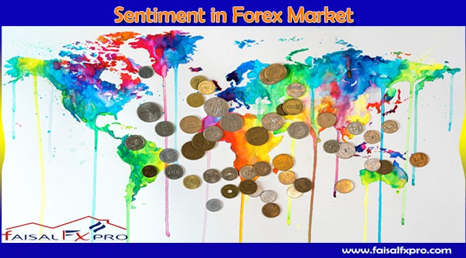 What is Sentiment in the Forex market