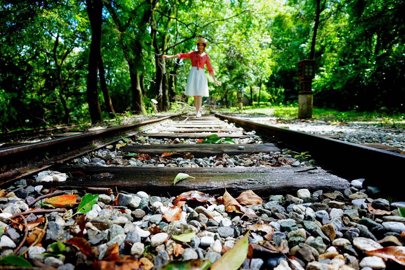 beautyanxiety.com-beautyanxiety.com-cultural-park-forest-DSC08488.jpg