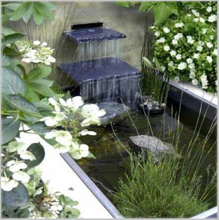 cara membuat taman rumah minimalis dengan kolam ikan