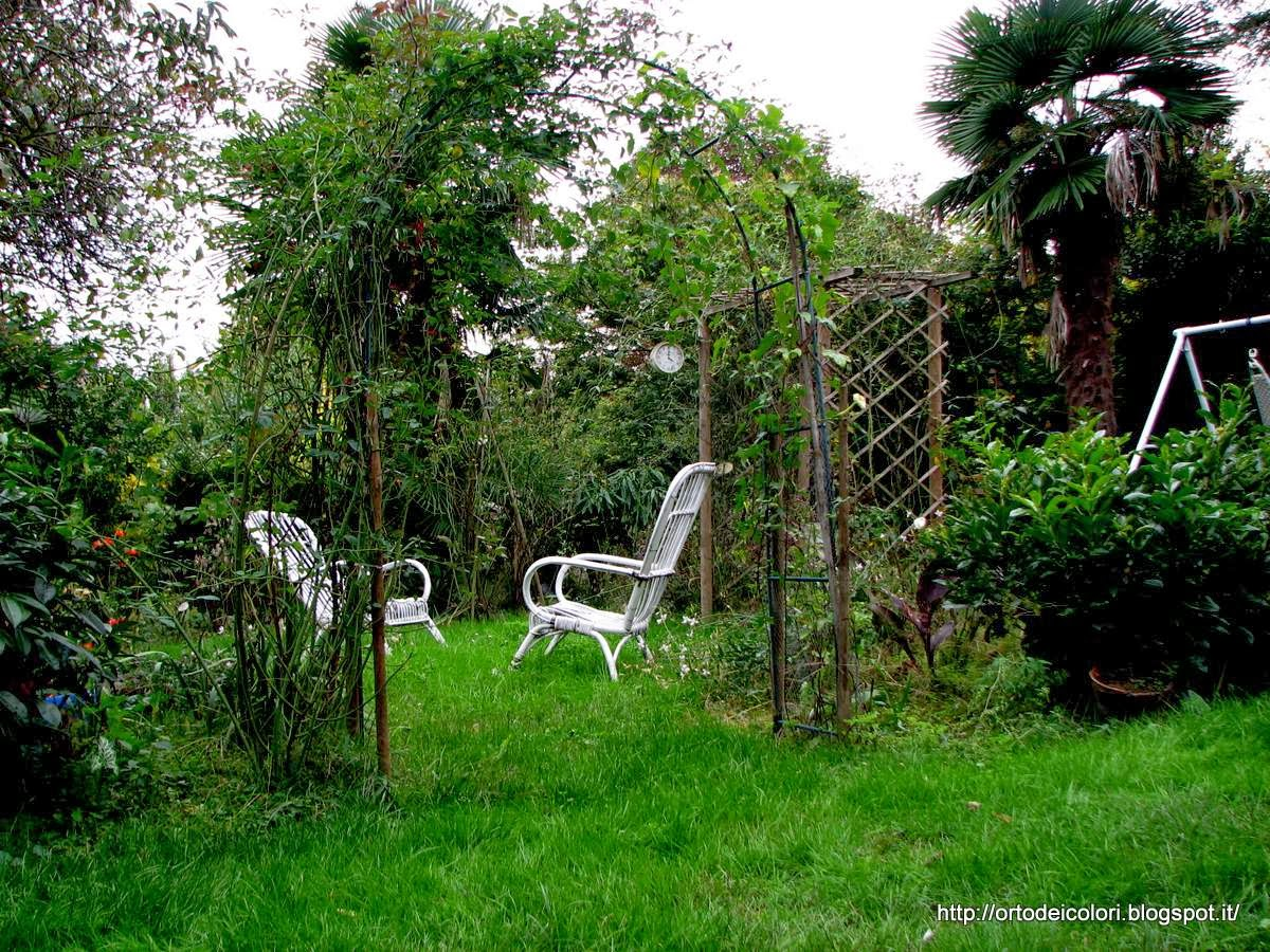 L 39 orto dei colori atmosfere autunnali in giardino - L orto in giardino ...