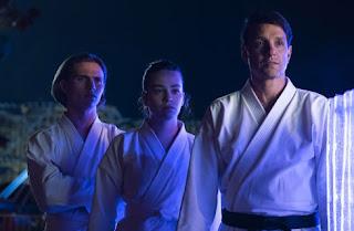 review miyagi dojo