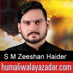 https://www.humaliwalayazadar.com/2019/09/s-m-zeeshan-haider-nohay-2020.html
