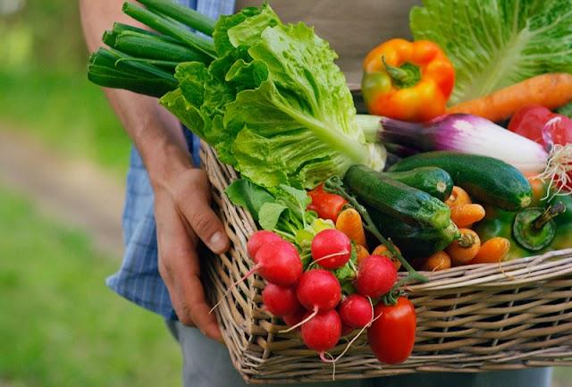 Comida orgânica está na ordem do dia