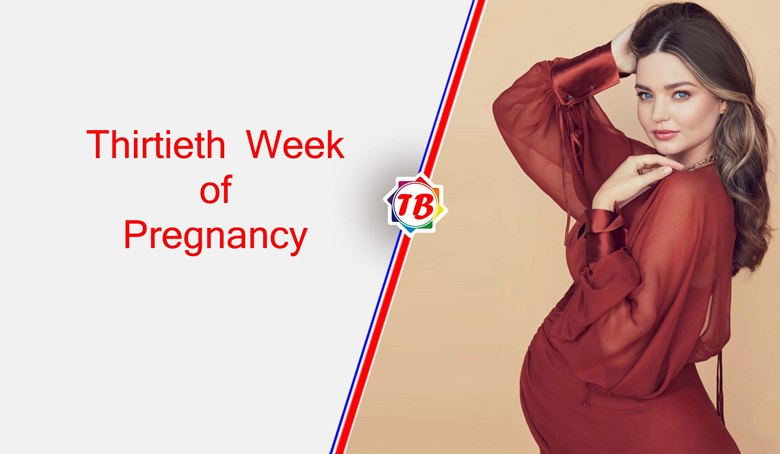 Thirtieth Week of Pregnancy