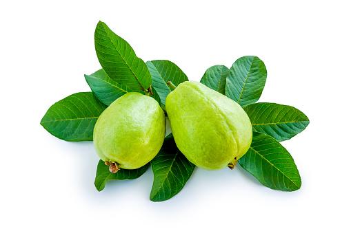 Obat herbal dari daun jambu biji