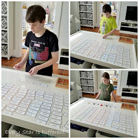 Montessori Spider Grammar Habitat Activity in Action