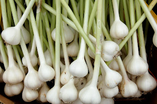 How Garlic link with Blood Sugar Level