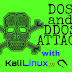 DOS and DDOS Attacks in Kali Linux