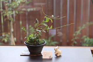 生徒の方が作った山野草盆栽と陶板、陶製のうさぎの人形、植物名を記したネームプレートの写真