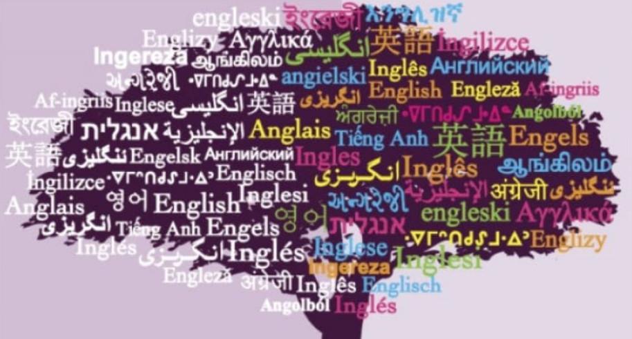 كلمات الوصل في اللغة الانجليزية