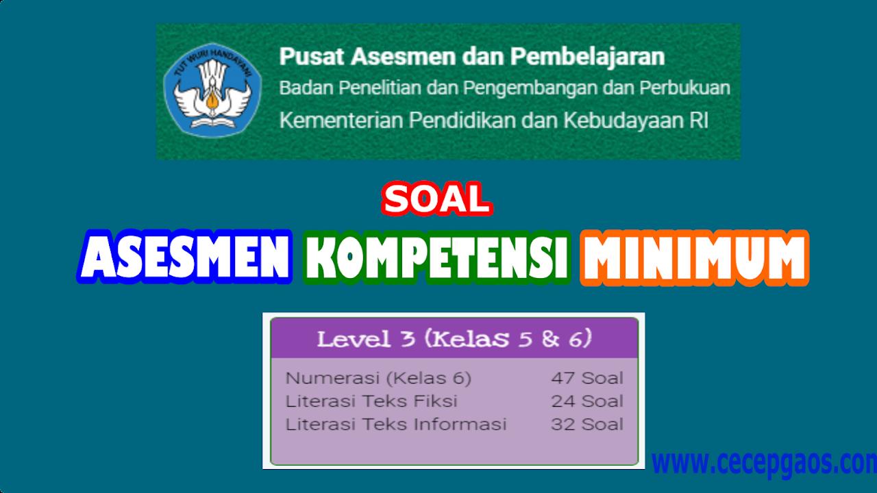 Contoh Soal Akm Online Level 3 Kelas 5 Dan 6 Sd Cecepgaos Com