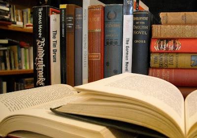 Pengertian, Ciri dan Unsur-unsur Novel