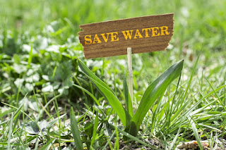 Savw-water-images-save-life