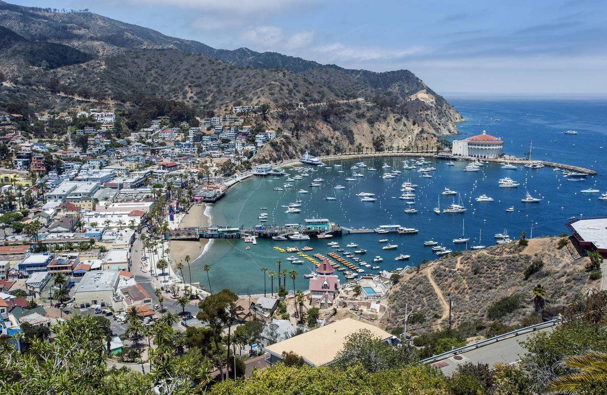 Enrique freeque 39 s forum for Catalina bay