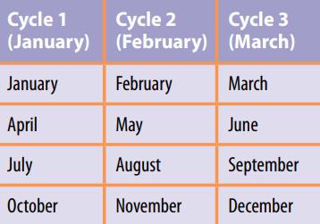Option Expiration Cycles