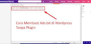 Cara Membuat File Ads.txt Di Wordpress Tanpa Plugin