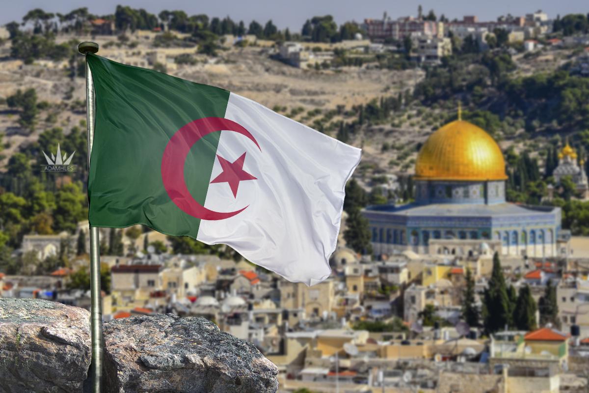 اجمل خلفيات علم الجزائر في القدس Flag of Algeria in Jerusalem