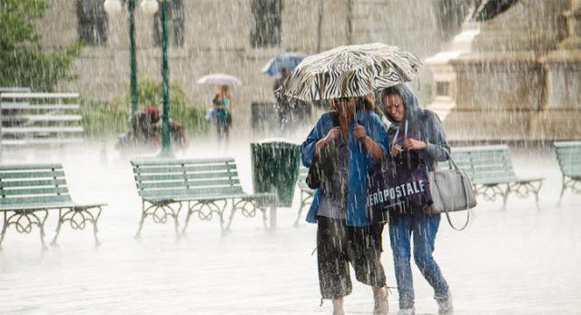 هولندا.. طقس عاصف وممطر في معظم هولندا