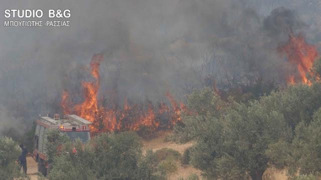 Πυρκαγιά στην Αρχαία Κόρινθο - Ενισχύσεις και από την Αργολίδα