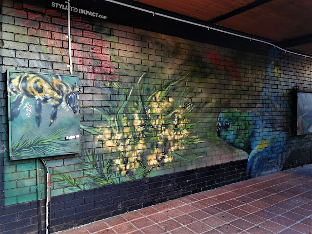 Canberra Street Art | Dickson mural by Stylized Impact