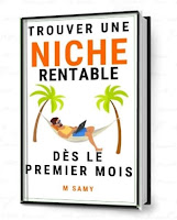 Book to find niches ecommerce and dropshipping and affiliation