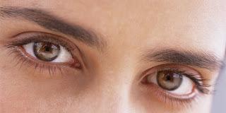 fungsi bagian mata dalam sistem indera penglihatan