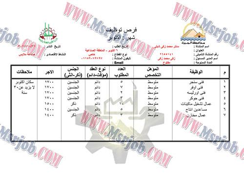 اعلان الحكومة المصرية عن توفير فرص عمل لشباب محافظة الجيزة