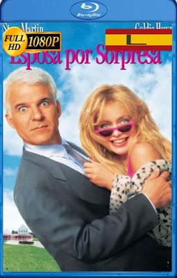 Esposa por Sorpresa (1992) Latino HD [1080P] [GoogleDrive] rijoHD