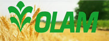 Olam Moves to Accelerate Ginger Value Chain in Kaduna 1