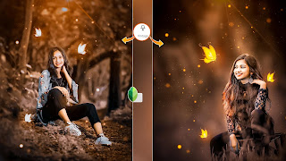 Snapseed New Amzing Concept Photo Editing Tutorial   Hd Png Download