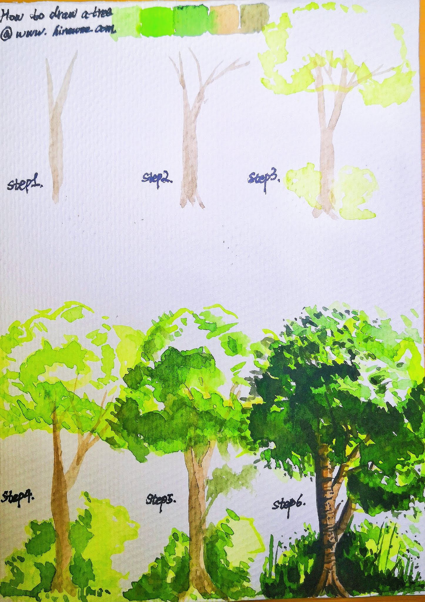 How to draw Watercolor Tree for beginner