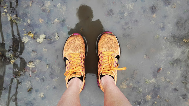 Project 366 2016 day 326 - Wet Monday morning run // 76sunflowers
