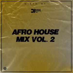 DJ Vidal Mix – Afro House Mix Vol. 2