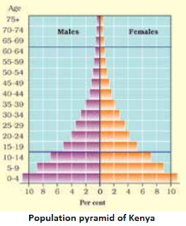 Population pyramid of Kenya