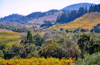 Sonoma Valley with fall colors