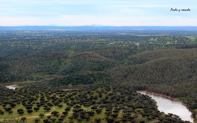 Dehesas de alcornoques y encinas en el Parque Nacional de Monfragüe. Cáceres
