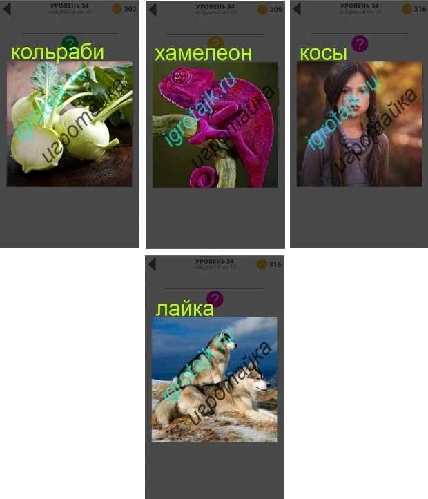 хамелеон меняет свой цвет, у девушки длинные косы ответы 400 плюс слов 2 34 уровень