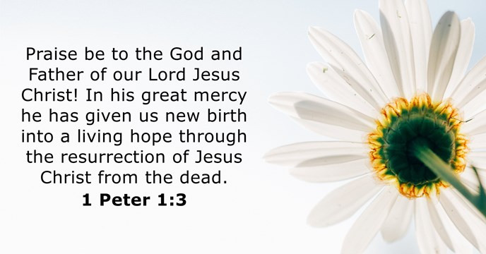 Praise be to the God and Father of our Lord Jesus Christ! In his great mercy he has given us new birth into a living hope through the resurrection of Jesus Christ from the dead.