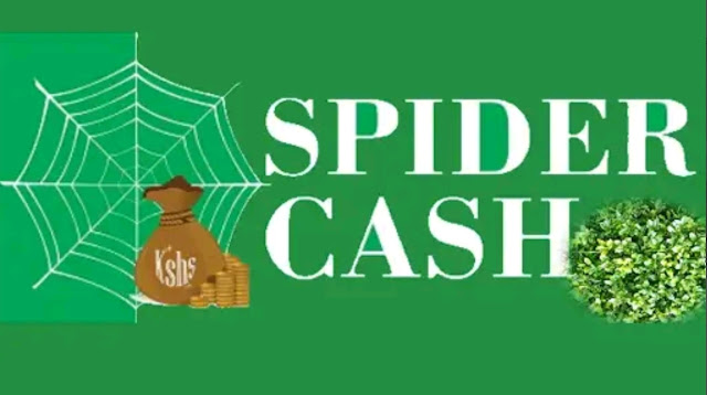 Spider Cash loan app