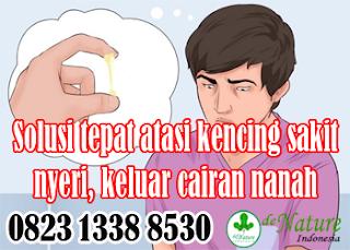 https://www.apotikdenature.com/2019/09/obat-kencing-nanah-paling-ampuh-di.html