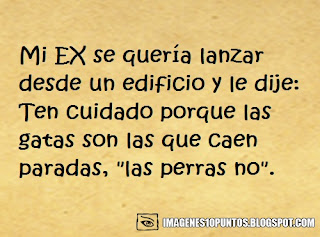 frases ironicas