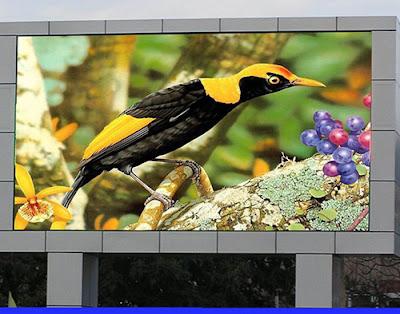 Công ty cung cấp màn hình led p5 chính hãng tại An Giang