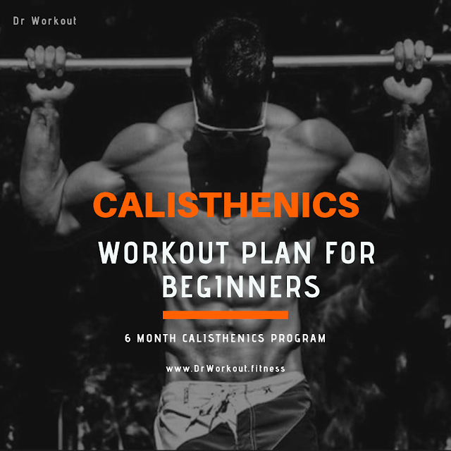 Calisthenics Workout Plan for Beginners - 6 Month Calisthenics Program